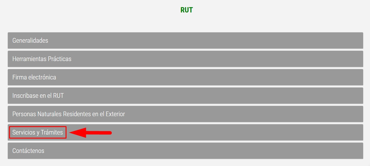 Cómo consultar el RUT paso 3