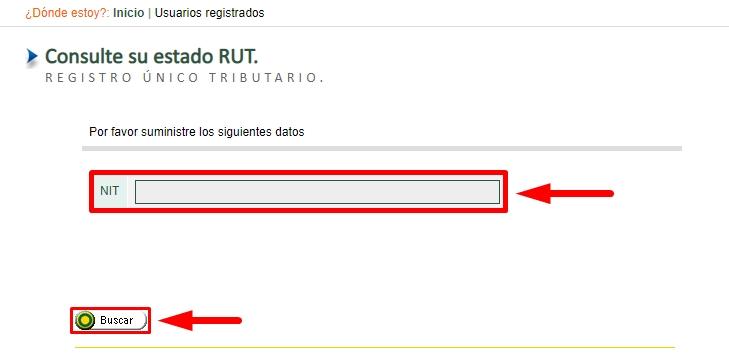Cómo consultar el RUT paso 5