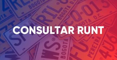 Consultar RUNT
